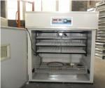 La Couveuse DK528 automatique la pluscomplète: CouveuseDK528 Paramètres techniques couveuse DK528 : Gamme d'affichage de la température 5-50°C Taux d'éclosion 0,95 Mesure de la...